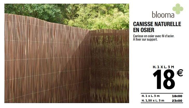 Canisse Bambou Brico Depot Gamboahinestrosa