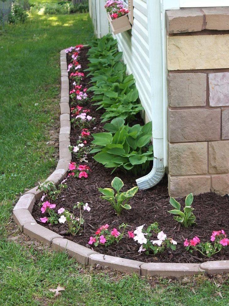 meilleures idees de bordure de pelouse